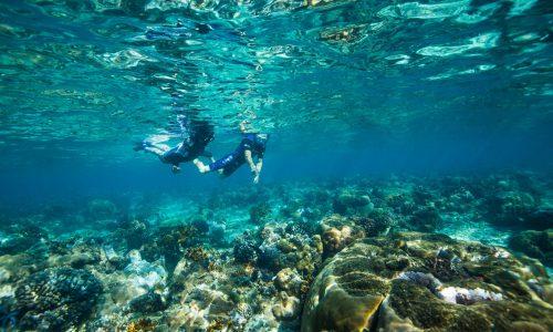 Azura-Benguerra Snorkeling