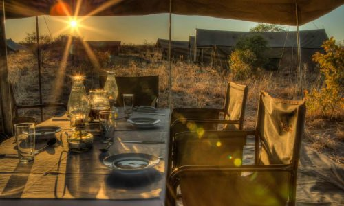 tourism, Airlink airline, archipelago charters, azura-benguerra-private-island, azura island, a Safari in africa, British airways, Camp Kuzuma's safari lodge camping, Bantry Bay Cape Town, Tourism corporation Africa, Dragonfly South Africa, tourism in south Africa, tourism, tourism in south Africa, Jaguar Land Rover Cape Town, Kaskaz Mara Camp, Corporation, Kurland plettenberg, Kyaninga safari Lodge, Lodge safaris, Maasai Wanderings, Mandhari Lodge, Mobile Safaris, Naona Moru Camp, Nasikia Mobile Migration Camp, Pan African COVID19 Policy, Pengilly House, Pride of Africa, Rovos Rail, Samara Private Game Reserve, Tarangire Ndovu Tented Lodge, The Private Concierge, Tintswalo Atlantic, Tintswalo Boulders, Tintswalo Lapalala, Tintswalo Safari Lodge | Tourism Corporation Africa