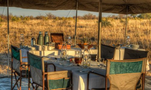 Mobile Safaris2406