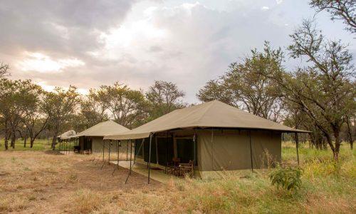 Naona Moru Camp-81